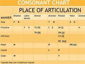 Consonants  Speech Communication
