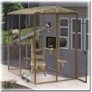 cat patio studios window and house on