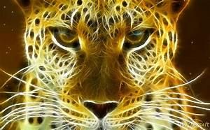 Animal En G : download free wild felines animated wallpaper wild ~ Melissatoandfro.com Idées de Décoration