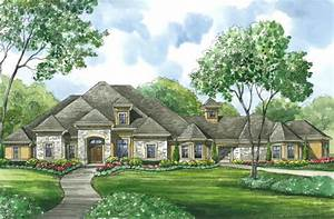 Image of: European Style House Free House Plan Review Ceiling Designs For Living Room European Style