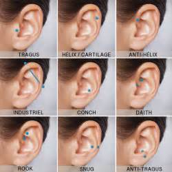 best earrings for cartilage 25 best ideas about rook piercing on rook