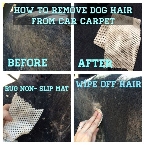 Removing Hair From Car Upholstery by How To Remove Hair From Car Carpet Why Didn T I
