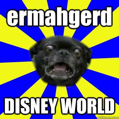 Disney World Memes - disney world memes