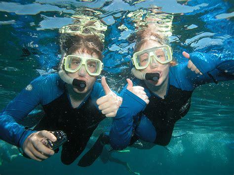snorkeling broward county lauderdale fort fish florida diving swim places visit snorkel dive scuba sub while