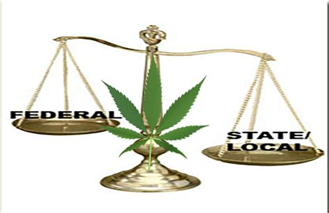 update federal  state government marijuana policy
