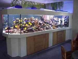 Aquarium Als Raumteiler : aquairenbau aquarien terrarien ~ Michelbontemps.com Haus und Dekorationen