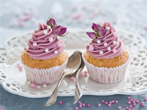 cuisine cupcake cupcakes food wallpaper 35346319 fanpop