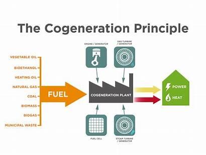 Chp Combined Heat Power Cogeneration Energy Principle