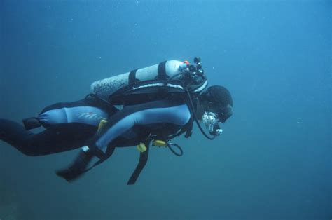 scuba disabled sports usa