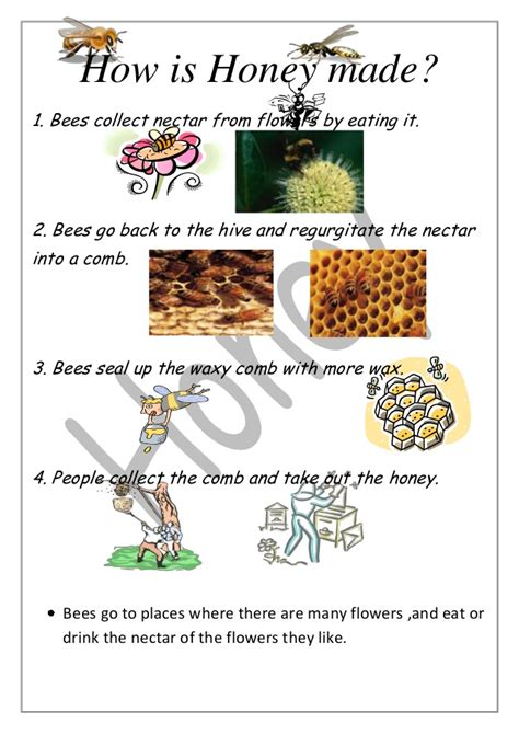 how is how is honey made