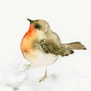 Bird Watercolor - Robin Redbreast. | Watercolor ...