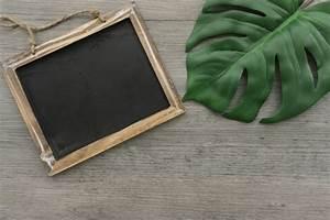 Feuille D Ardoise : ardoise d corative c t d 39 une feuille verte t l charger des photos gratuitement ~ Dallasstarsshop.com Idées de Décoration