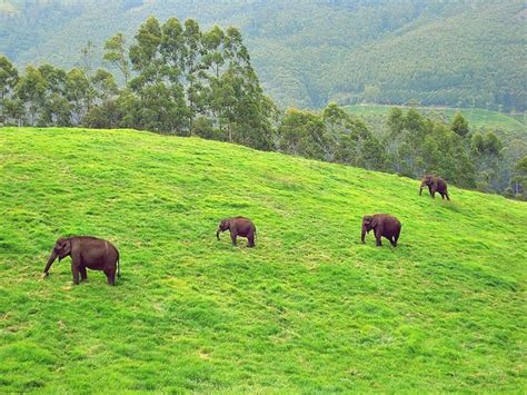 Visit These 10 Biosphere Reserves In India If You Really