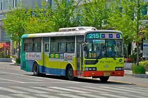 File:City bus in Daejeon.jpg - Wikimedia Commons