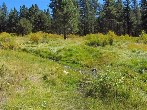 Moments In Dirt And Ink Golden Trout Wilderness Tour