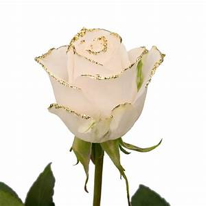 White Roses with Gold Glitter | Premium Wholesale Flowers ...