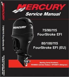 Mercury 75 90 115 Efi    80 100 115  Eu  Efi Outboard