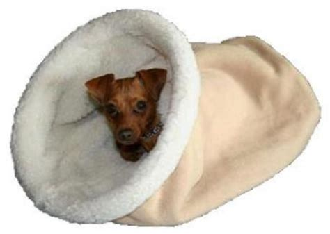 Burrowing Bed by Cozy Beds Burrow Beds Chihuahua Bed Small By