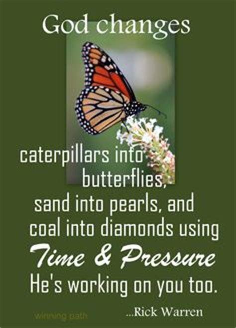 butterfly inspiration   corinthians