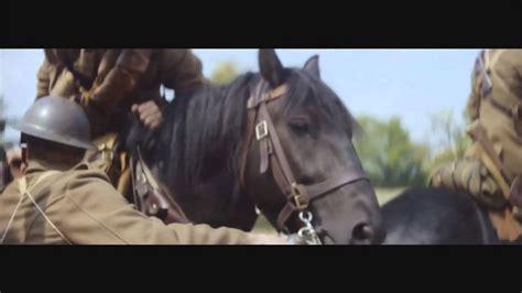 horse emotional
