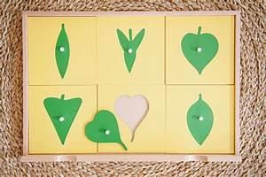 Main Principles Of Montessori Preschool