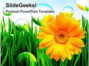 Sunflower Nature Powerpoint Template 1110