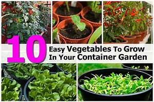 Container vegetable vertical garden 2017 2018 best for Vegetables to grow in a garden