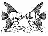 Coloring Angelfish Pages Kissing Angel Couple Drawing Fish Queen Death Clipartmag sketch template