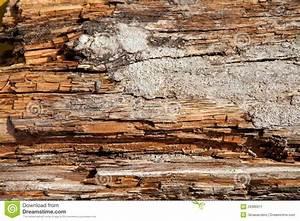 Holz Und Raum : altes holz als hintergrund mit raum f r text stockbild ~ A.2002-acura-tl-radio.info Haus und Dekorationen