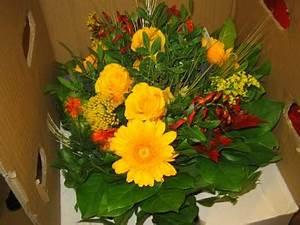 Blumen In Der Box : blumen f r bj rn der shopblogger ~ Orissabook.com Haus und Dekorationen