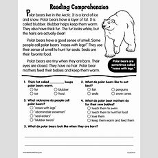 Reading Comprehension Polar Bears Worksheet For 2nd  4th Grade  Lesson Planet