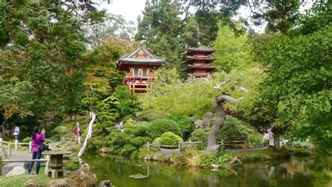 japanese tea garden at golden gate park 1 picture of
