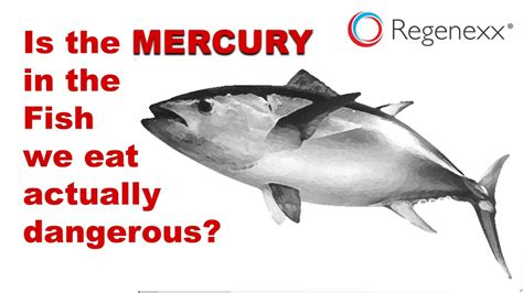 fish mercury levels eating does dangerous regenexx increase really