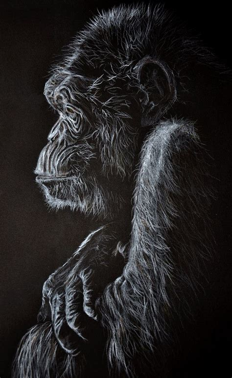 animal drawing  black paper  thinking
