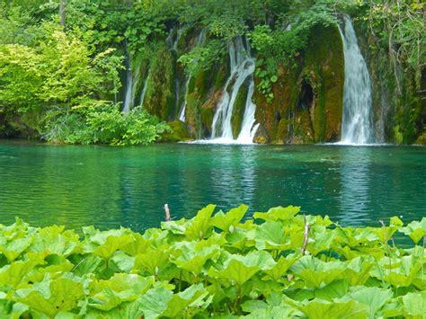 images gratuites paysage arbre la nature cascade