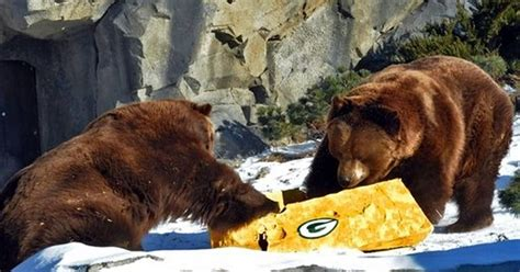bears packers jokes  game day