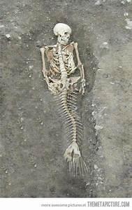 Real life mermaid...say what?! | stuff | Pinterest