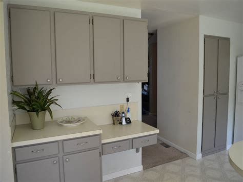Can You Paint Veneer Kitchen Cabinets - Veterinariancolleges