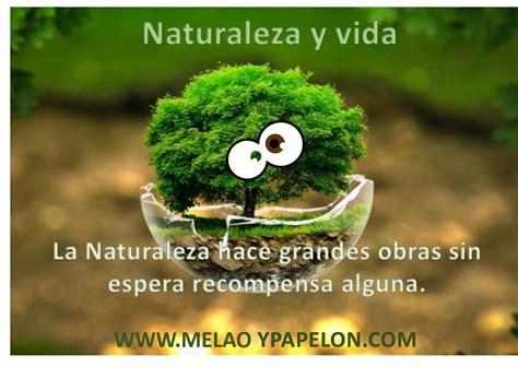 frases sobre el medio ambiente y la naturaleza t