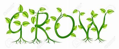 Grow Clipart Growth Plant Leaves Letters Growing