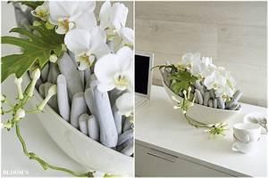 Schalen Deko Ideen : dekoideen mit orchideen f r schalen tiziano ~ Whattoseeinmadrid.com Haus und Dekorationen