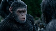 War For The Planet Of The Apes Review: A Brilliant End To ...