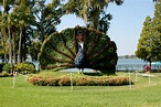 Panoramio - Photo of Topiary at Cypress Gardens Adventure ...
