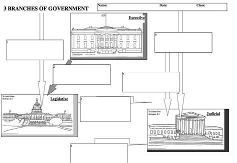 judicial branch worksheets free worksheets library