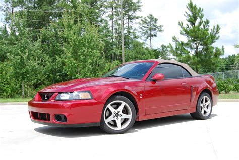 2003 Ford Mustang Svt Cobra Pictures Cargurus