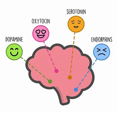 Happiness Chemicals Dose Daily Oxytocin Tree Endorphins