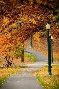 14, Photos, Of, U0026quot, I, Walked, On, Paths, Of, Crisp, Autumn, Leaves, U0026quot