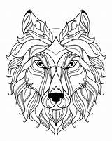 Wolf Coloring Wolves Simple Head Adult Animals sketch template