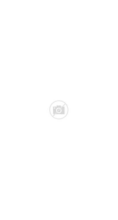 Sonia Delaunay Textile Scarf Silk Printed Wgsn