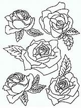 Coloring Rose Pages Flowers Flower Google Printable Bouquet Recommended Colors Mycoloring піна походження sketch template